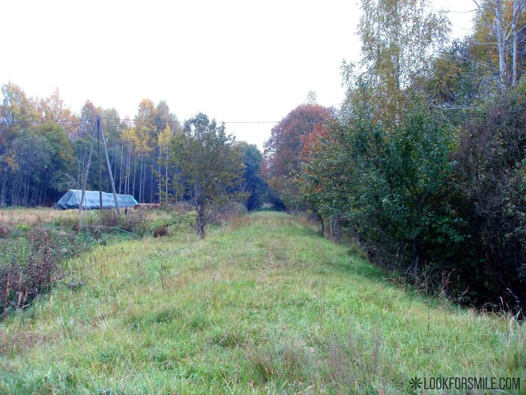 Pārgājiens Aloja-Skulte, ceļš - blogs - Lookforsmile.com
