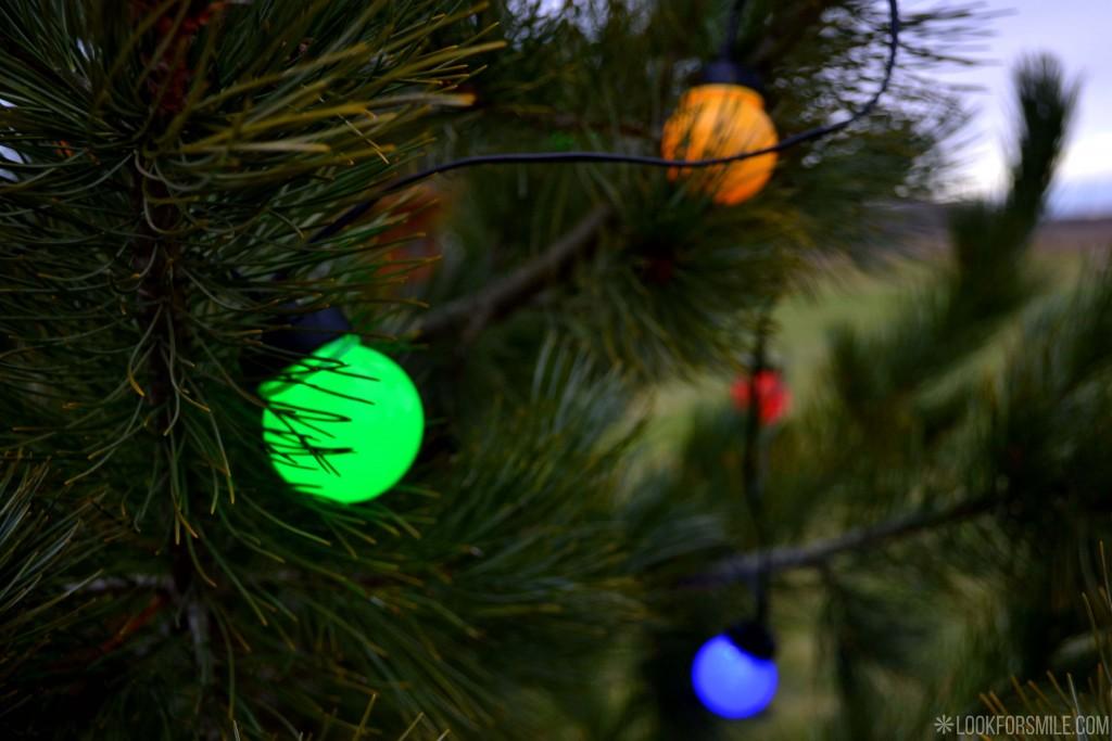 Ziemassvētku lampiņas - blogs - Lookforsmile.com