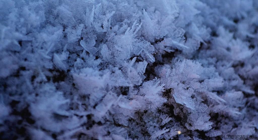 snowflakes in close, snow, winter, nature - blog - Lookforsmile.com