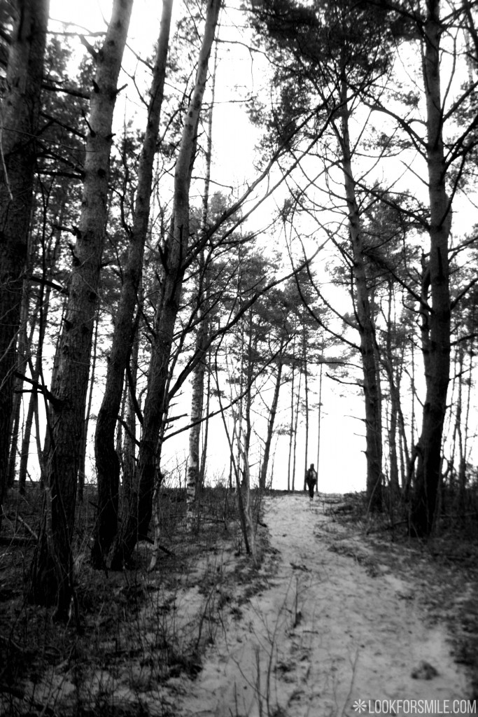 forest, black and white photo, seaside - blog - Lookforsmile.com
