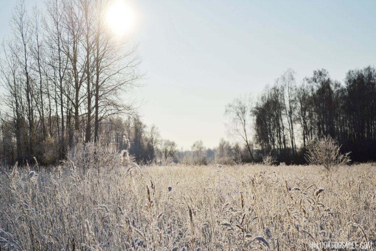Nature in Winter - blog - Lookforsmile.com