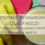 homemade dishwashing liquid review - blog - Lookforsmile.com