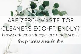 soda and vinegar are ecological - blog - Lookforsmile.com